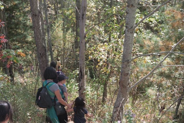 orchard_hike