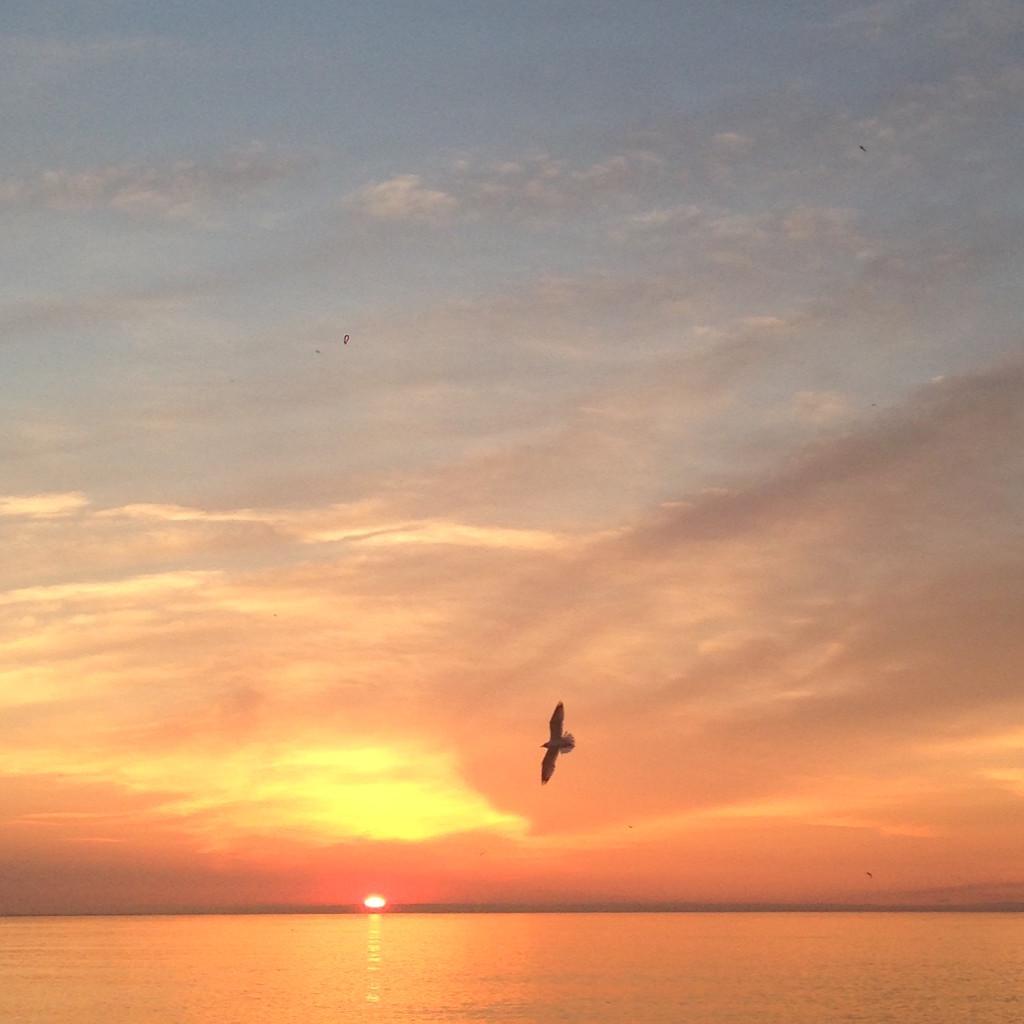 2_sunrises7