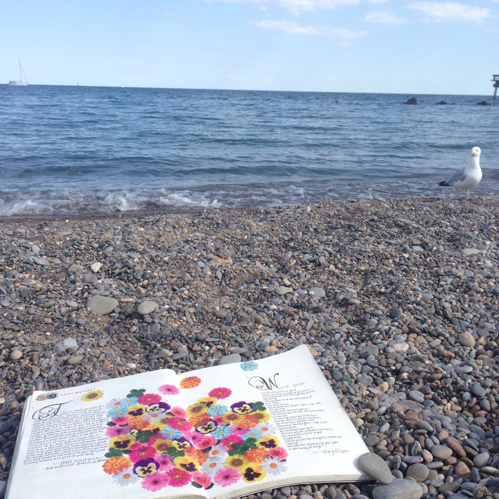 Day 53_Book of Hours_Beach